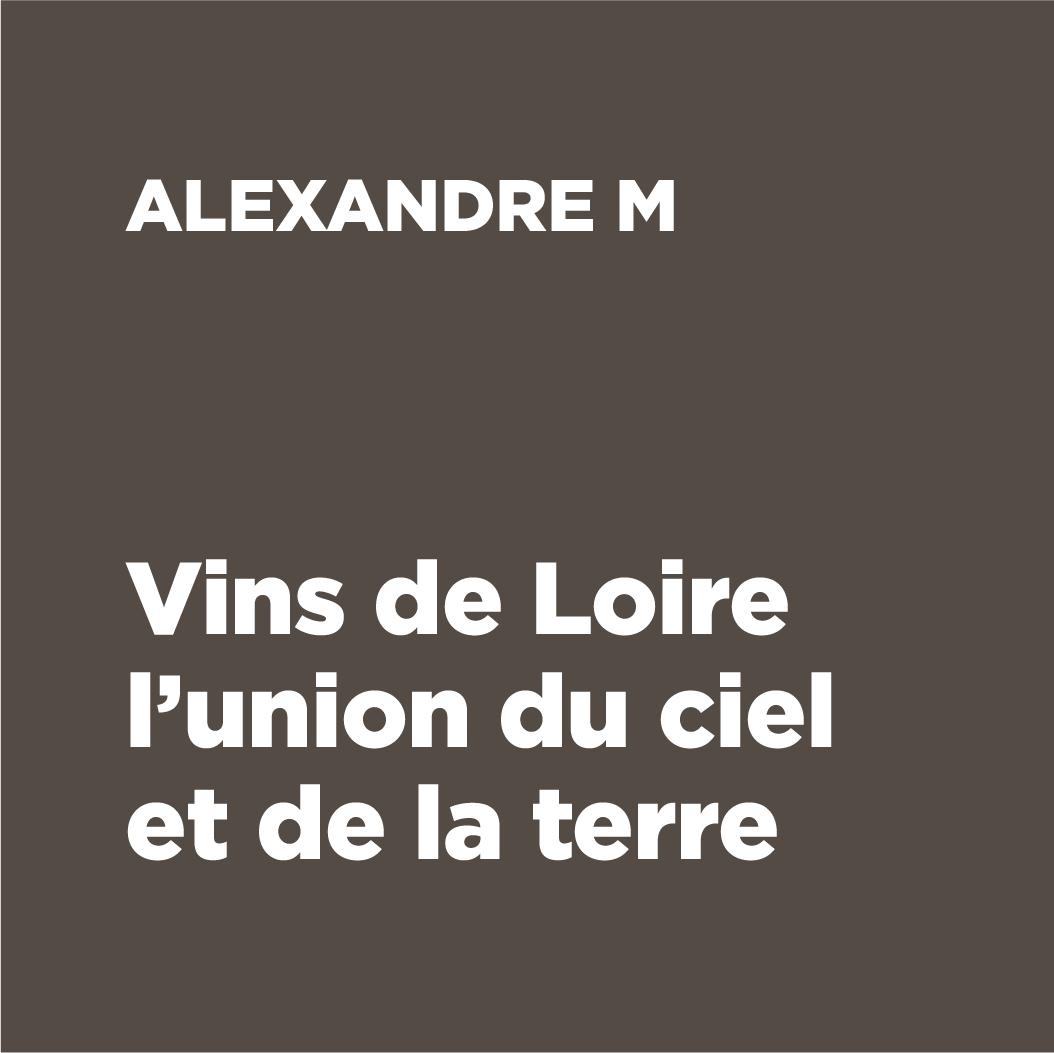 DESCRIPTIF LOGO LES VINS ALEXANDRE M VIKIU DESIGN